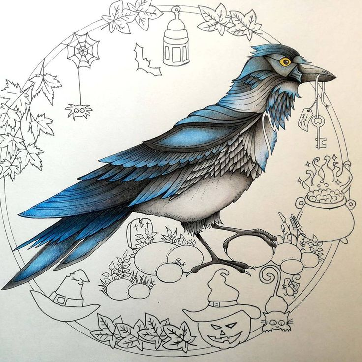 My crow is done. Swipe to see halloween mood coming #johannabasford #enchantedforest #secretgarden #lostocean #adultcoloringbook #adultcoloring #fabercastell #polychromos #prismacolor #coloringbookforadults #coloringbook #topcoloridos #coloringfun #magicaljungle #enchantedcoloring #colorindolivrostop #coloringmasterpiece #coloringtherapy #instaart #carandache #wip #workinprogress #coloringforadults #livrodecolorir #halloween #crow #autumn