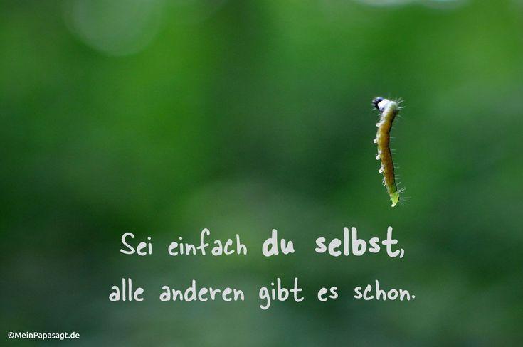 Sei einfach du selbst, alle anderen gibt es schon. #weisheit #humor #Zitate #deutsch