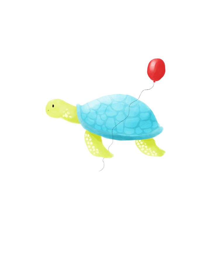 Birthday Turtle Greetings Card Design