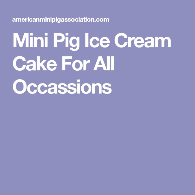 Mini Pig Ice Cream Cake For All Occassions