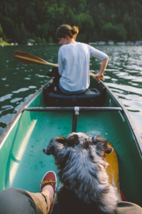 We always have our sweet pup with us canoeing whether it's a day or a week long canoe/ camp down a long long river!