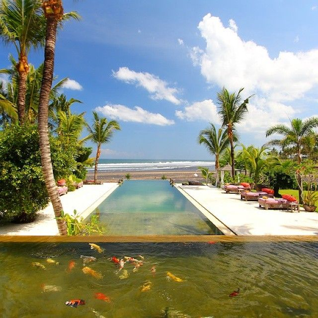 infinity pool view from villa makenbo bali || book your #villa,#hotel & #accomodation with us get the best rate offers.for futher inquiries email to;info@geriabalivacation.com has tag #geriabali for...