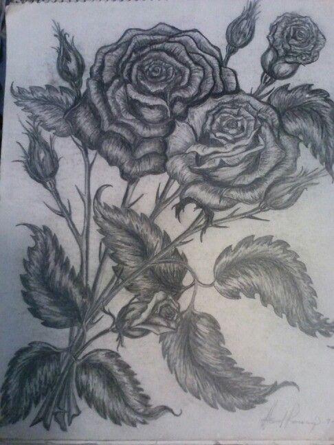 Pencil drawing of roses by Howard Ramsaroop