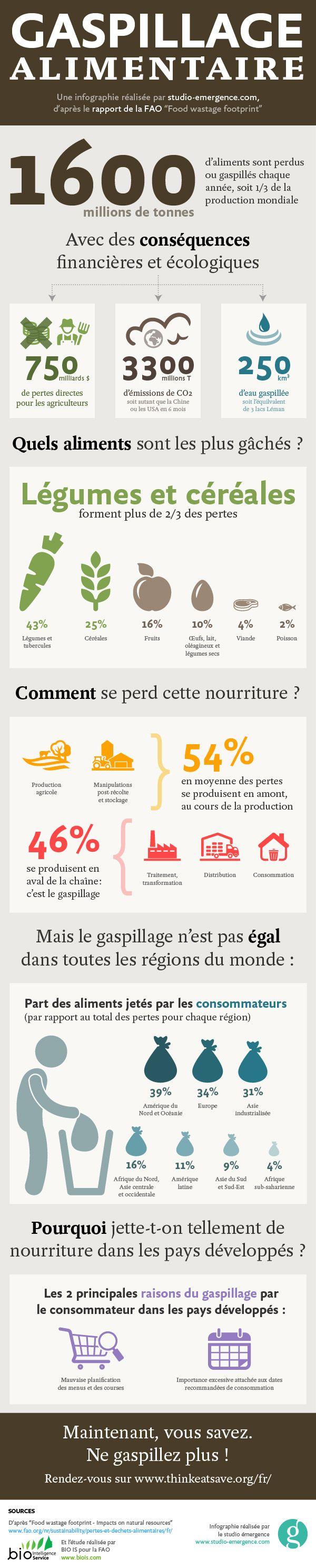 Gaspillage alimentaire, infographie du studio émergence d'après le rapport de la FAO Food wastage footprint