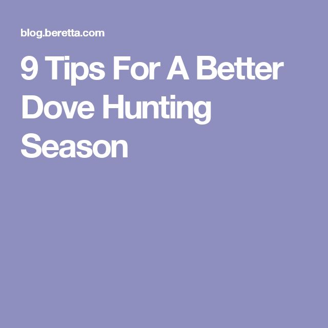 9 Tips For A Better Dove Hunting Season