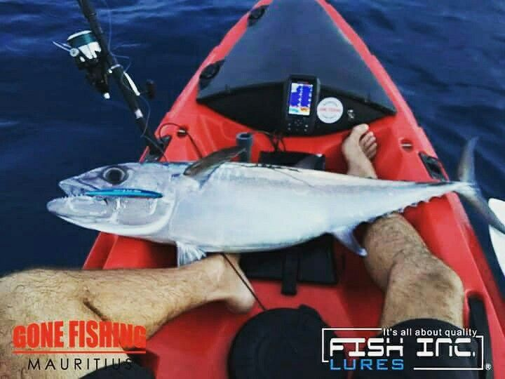Thanks our good friend Gone Fishing from Mauritius with their team Kayak Fishing & Light Tackle Mauritius Island  and angler Le Court Armand !