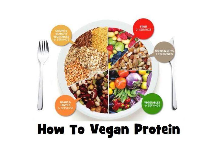 High Protein Vegan Bodybuilding Foods + Macros IIFYM  www.HollyBrownFit.com