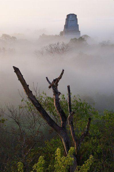 good LA Times article - Exploring Maya ruins in Guatemala's Tikal National Park
