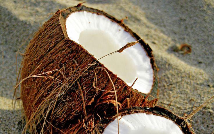 Karibian kookos maistuu heltellä. www.apollomatkat.fi #Dominikaaninen #Karibia