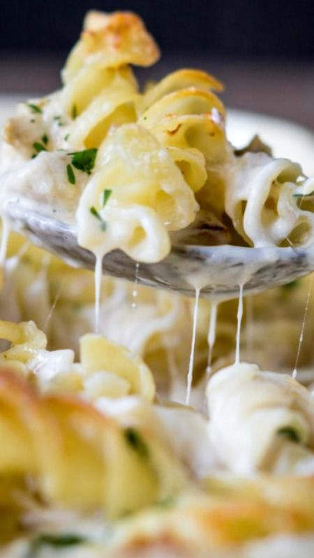 Best 25+ Chicken alfredo casserole ideas on Pinterest