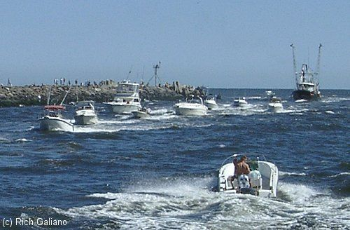 68 best images about jersey shore on pinterest sandy for Jersey shore fishing