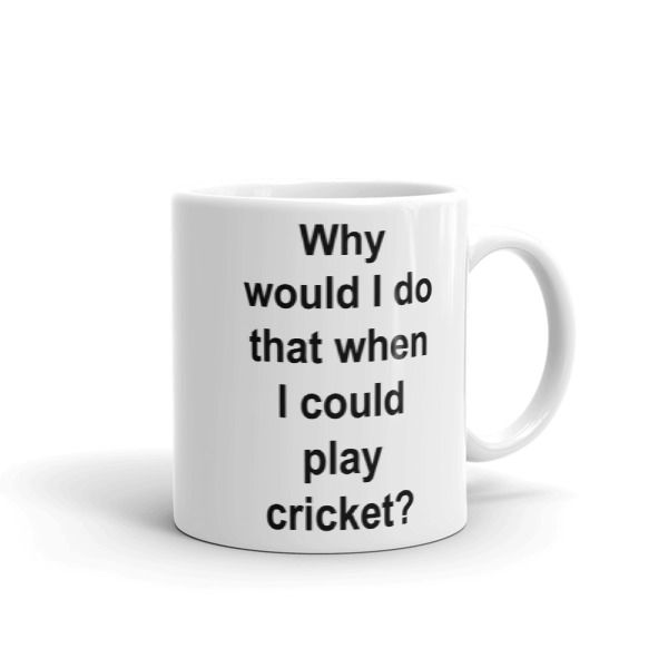 Why would I do that when I could play cricket? Mug //FREE Shipping //     #quotemugs