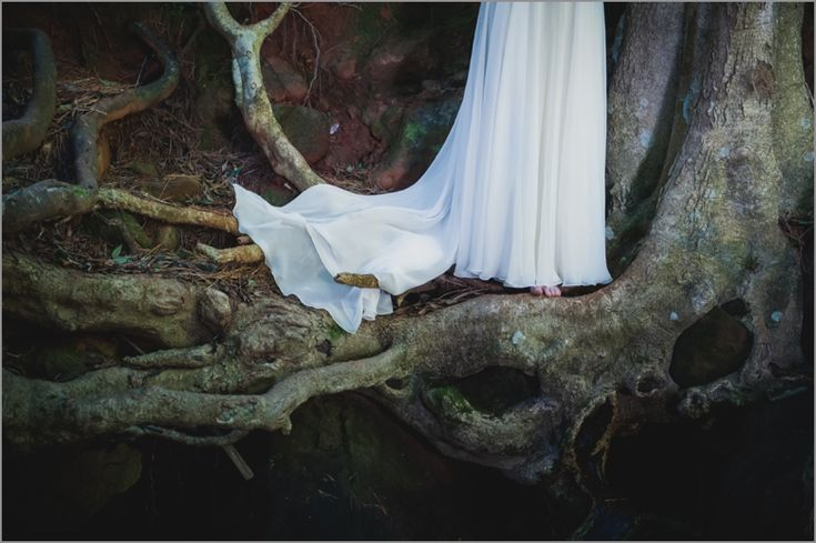 Cape-Town-wedding-Photographer-Lauren-Kriedemann-owl-forest-magical017