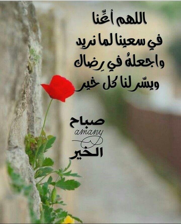 صورة رسائل صباح الخير رومانسية Good Morning Flowers Jumma Mubarak Messages Beautiful Morning