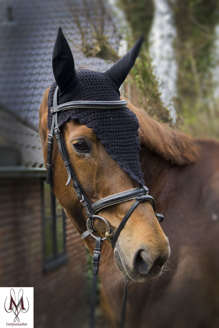 Imperatore horse vans for sale -  Long Fly Bonnet Black Fly Veil Fly Mask Dressage Bonnet Showjumping Fly Bonnet Eventing Horse Fashion Etsy Shop Hunter Class Fashion Hunter