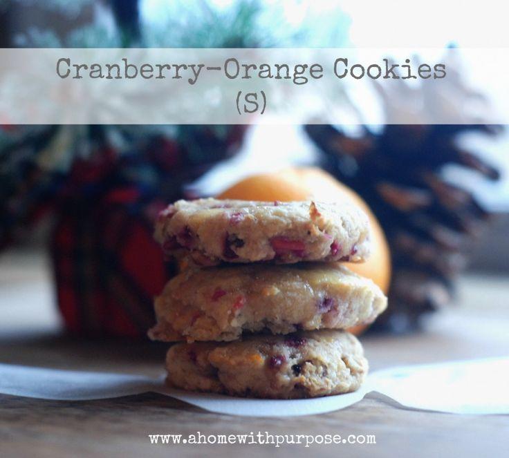 Cranberry-Orange Cookies (gluten, dairy and sugar free) - Dairy Free ...