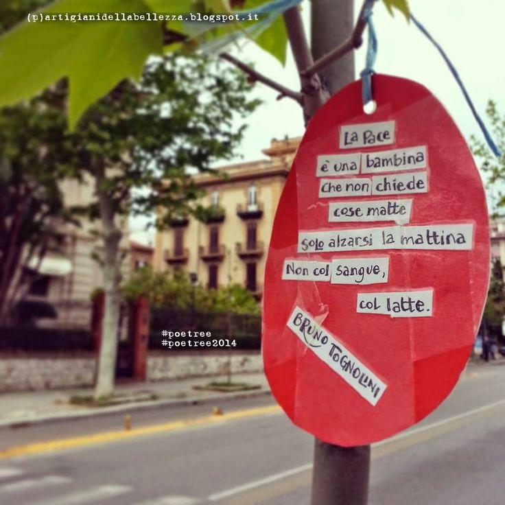 """""""La Pace è una bambina che non chiede cose matte solo alzarsi la mattina non col sangue, col latte""""  Bruno Tognolini  #poetree #poetree2014"""