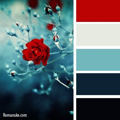 Navy blues, cream and red. Very striking color pallet.