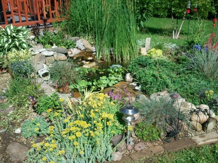 18 best images about bog filter on pinterest water for Garden pond design books