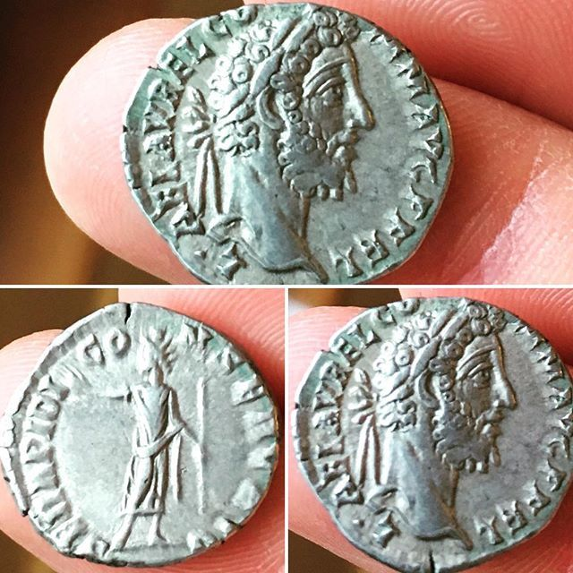 COMMODUS , Denarius c191-192AD Rome mint, Rev:- SERAPIDI CONSERV AVG  Serapis, radiate, standing front, head left, holding branch & sceptre RSC 703
