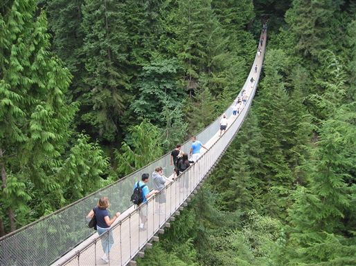 Stroll on the Capilano Suspension Bridge in Vancouver BC.