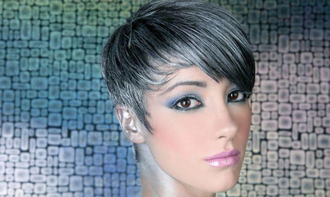 tinte de pelo gris | Tinte o mechas color plata - Hogarutil