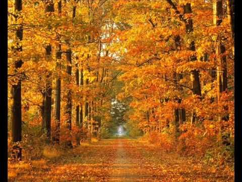 Autumn Leaves- Natalie Cole--One of my favorites---my mother loved it too :-)
