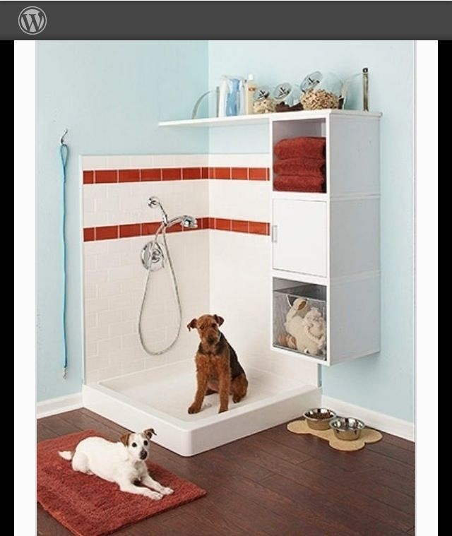 Dog washing station built into home, garage, or patio