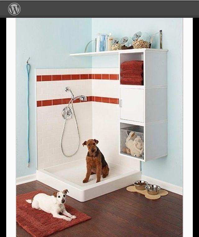 1000 Images About Dog Wash Station On Pinterest