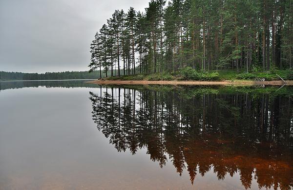 http://fineartamerica.com/featured/mirror-in-the-water-stefan-pettersson.html?newartwork=true