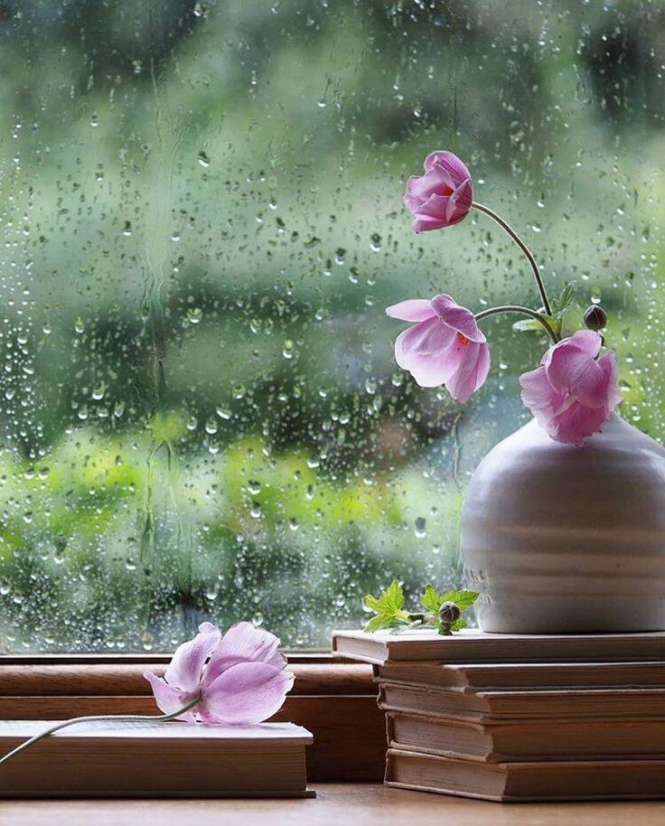 Днем рождения, открытка дождливое доброе утро