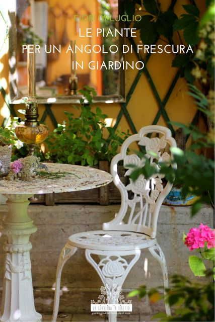 Le mie piante ed i miei trucchi per allestire un angolo di frescura in giardino all'ombra della pergola.  Leggi di più sul blog! #giardinoindiretta #fiori #luglio #giardino #ombra #relax