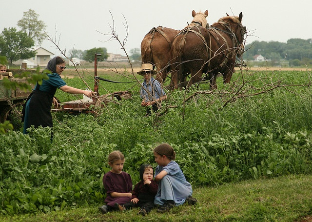 "Amish way of life...earth, family, and spirit. No hours of distraction in front of a TV, no made up ""needs"" due to consumerism. This life is focused on true reality."
