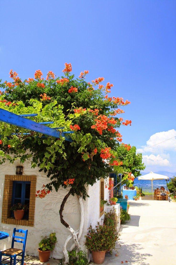 Kos, Greece defplanet.com