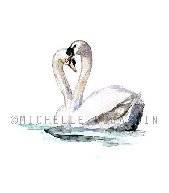 Hey, I found this really awesome Etsy listing at https://www.etsy.com/listing/161934932/swan-watercolor-painting-giclee-print