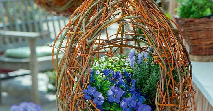Aus Weidenzweigen kann man verschiedenste Deko-Objekte mit natürlichem Flair basteln. Unsere Blumenampel ist auch für Anfänger sehr leicht nachzubauen.