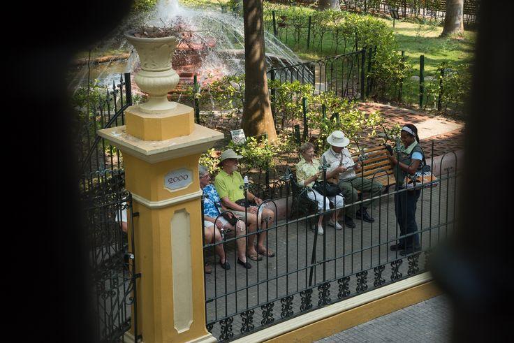 Parque Bolivar, los turistas descansando y buscando el frescor en las tórridas tardes cartageneras.