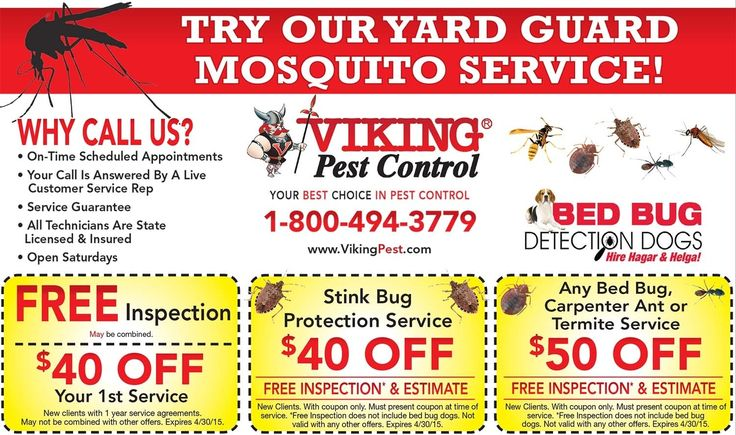 Viking Pest Control Coupons- Special Offers | Viking Pest Control inside Viking Pest Control Coupons Viking Pest Control » Mailer - Viking Pest Control - Nj, Ny, Pa for Viking Pest Control Coupons Pest Control Coupon | $35 Off Pest Services | Viking Pest Control within Viking Pest Control Couponsviking pest control coupons This is a :15 commercial for Viking Pest Control. Visit www.vikingpest.com to find out more. - Read more at http://www.iabp.org/viking-pest-control-coupon