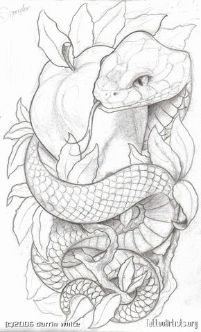 Like the symbolism. Lots of snake and apple tattoos have an angry looking snake, which is not what I want to go for; knowledge is good.