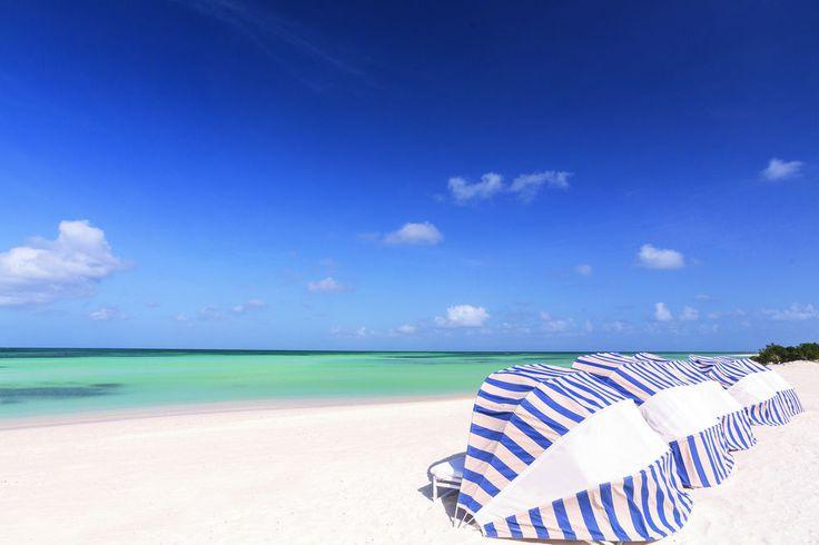 Top Aruba Hotels near Eagle Beach