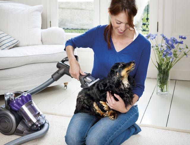 The 10 Best Pet Hair Vacuums
