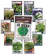 The 25 best simple plant cell ideas on pinterest simple science epsom salts add these key micronutrient into the soil increasing seed germination rates studies show malvernweather Image collections