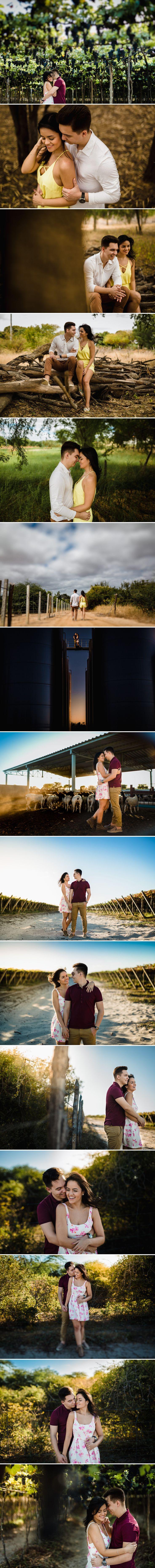 sessão de casal em petrolina em uma vinícola. ideias de pré-casamento com o fotógrafo arthur rosa
