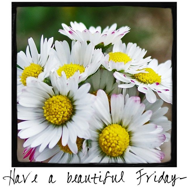 Have a beautiful Friday! Come by and check out A Warm Hello!
