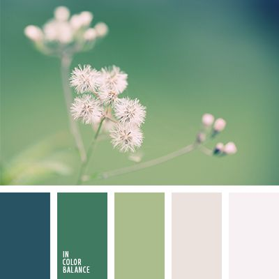 beautiful color palettes for your home