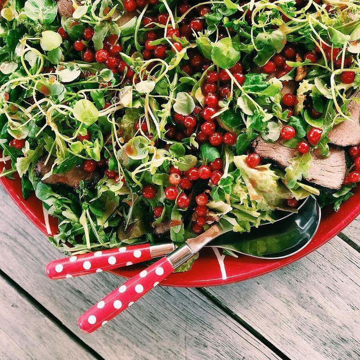 Do potraw z grilla fantastycznie pasują sałatki do których dla mięsożerców można dodać plasterki np. grillowanej dziczyzny. #salata #dziczyzna #broilking #broilkingpl #broilkingpolska #vsco #vscocam #mniam #jemzdrowo #grill #grillgazowy #instamood #instafood #foodporn
