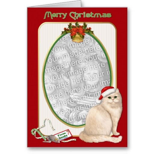 21 best pet photo christmas cards images on pinterest. Black Bedroom Furniture Sets. Home Design Ideas