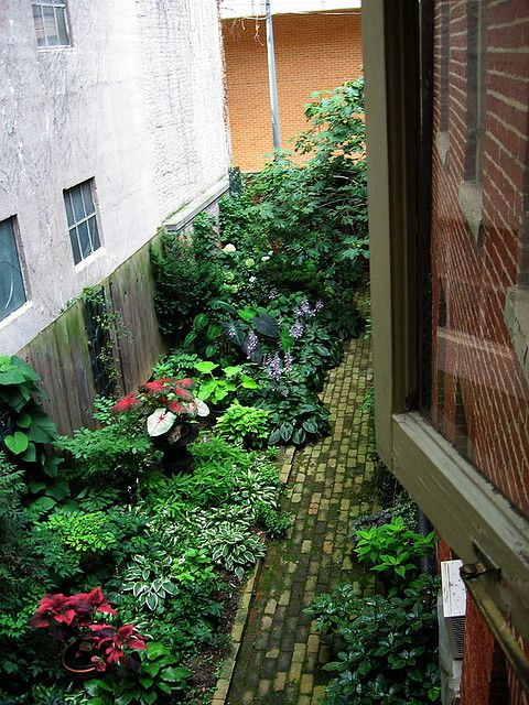 Great Garden Ideas 186 best small urban gardens images on pinterest | landscaping