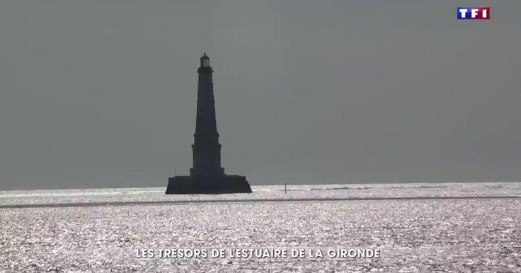 A la découverte de l'estuaire de la Gironde  -   Le journal de 20h -  TF1