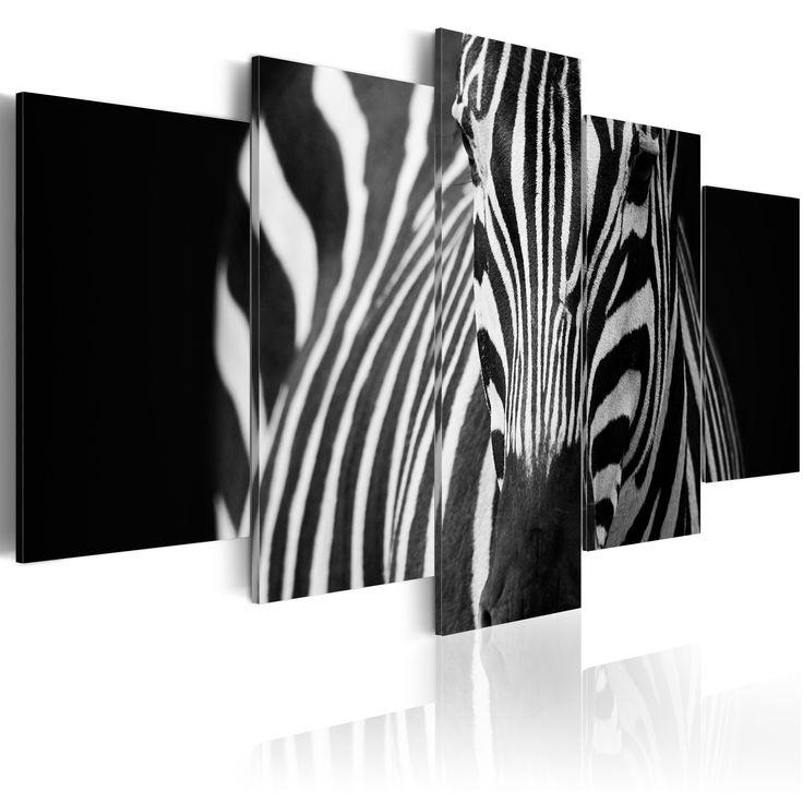 Obraz zebra #zebra #animal #natur #black #white #art #design